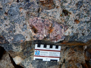 Pink andalusite